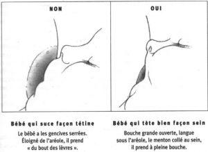 bonne-position-bouche-allaitement